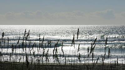 Photograph - Sea Oats And Sparkle by Betty Buller Whitehead