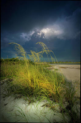 Florida Seascape Photograph - Sea Oats In The Storm by Marvin Spates