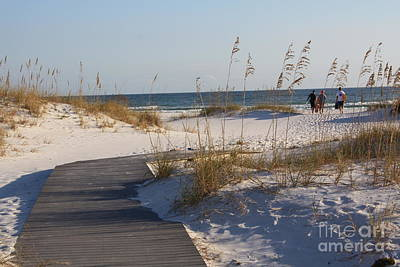 Photograph - Sea Oats Passage by Danielle Groenen