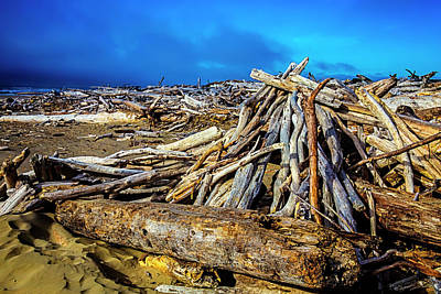Weatherworn Photograph - Sea Of Driftwood by Garry Gay