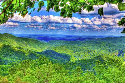 Photograph - Sea Of Green by Dale R Carlson