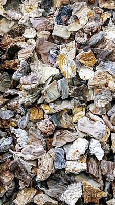 Photograph - Sea Of Rocks by David Millenheft