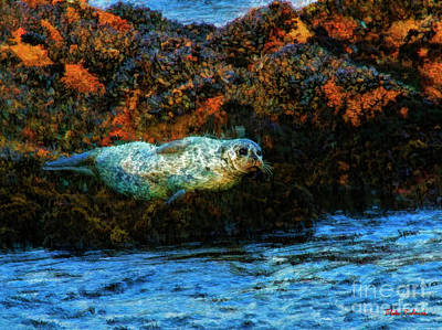 Photograph - Sea Otter At Sunset by Blake Richards