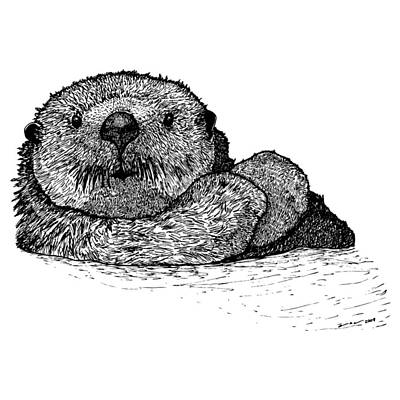 Wild Life Drawing - Sea Otter by Karl Addison
