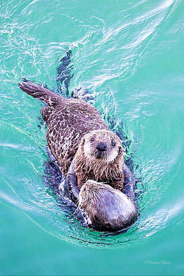 Sea Otter Pup Art Print