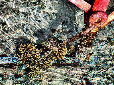 Sea. Rusty Iron And Corals. Art Print by Andy Za
