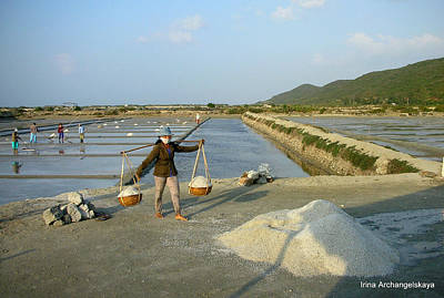 Photograph - Sea Salt Harvesting In Vietnam  by Irina ArchAngelSkaya