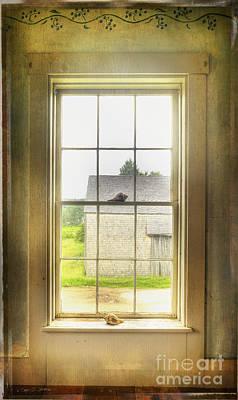 Photograph - Sea Shell Window by Craig J Satterlee