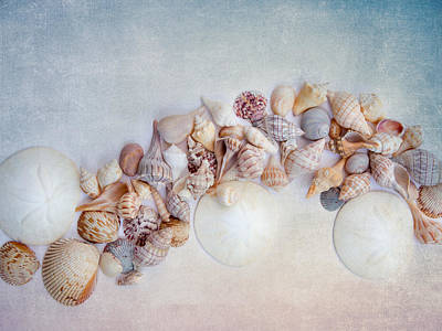 Photograph - Sea Shells 4 by Rebecca Cozart