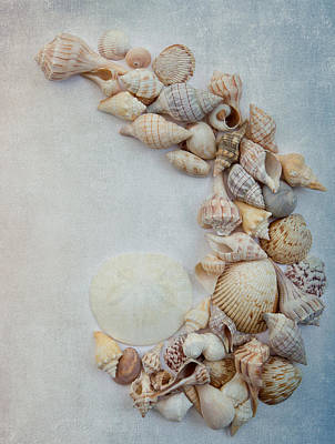 Abstract Sand Photograph - Sea Shells 8 by Rebecca Cozart