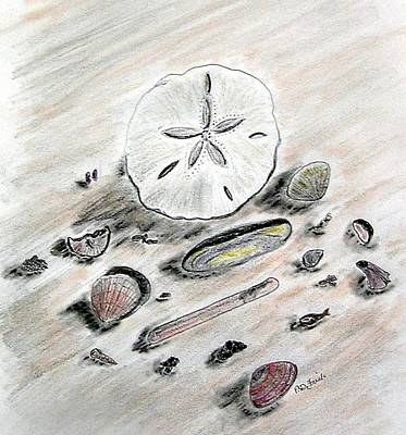 Sea Shells Art Print by Diane Frick