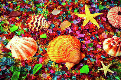 Sea Shells On Sea Glass Art Print by Garry Gay
