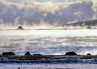 Photograph - Sea Smoke by Janice Drew