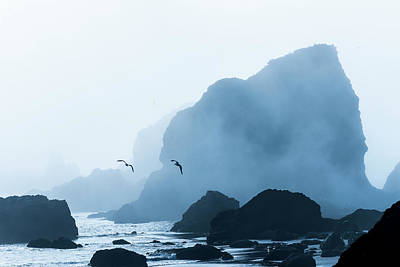 Photograph - Sea Stacks And Fog by Robert Potts