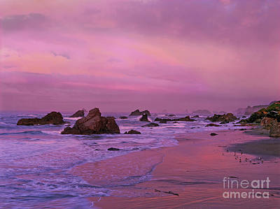 Photograph - Sea Stacks At Dawn Harris State Beach Oregon by Dave Welling