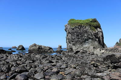 Photograph - Sea Stacks At Harris Beach - 4 by Christy Pooschke
