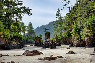 Photograph - Sea Stacks by Keith Boone