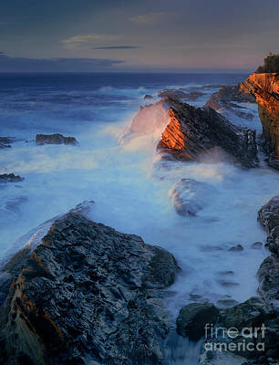 Photograph - Sea Stacks Shore Acres State Park Oregon by Dave Welling