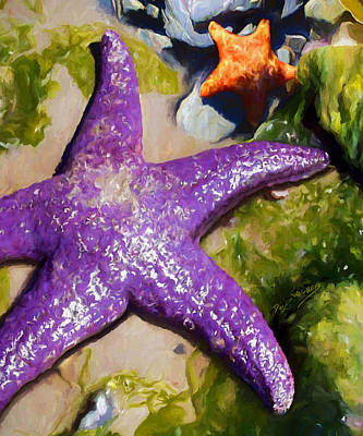 David Wagner Painting - Sea Stars by David Wagner