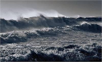 Sea Storm Original