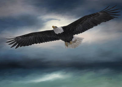 Photograph - Sea To Sky - Eagle Art by Jordan Blackstone