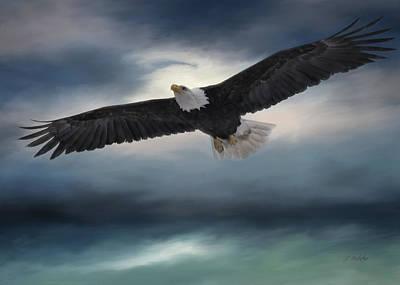 Photograph - Sea To Sky - Eagle Art by Jordan Blackstone