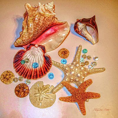 Digital Art - Sea Treasures by Jacqueline Sleter