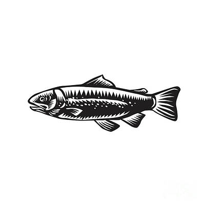 Linoleum Digital Art - Sea Trout Spotted by Aloysius Patrimonio