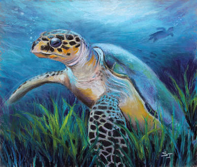 Pastel - Sea Turtle Cove by Susan Jenkins