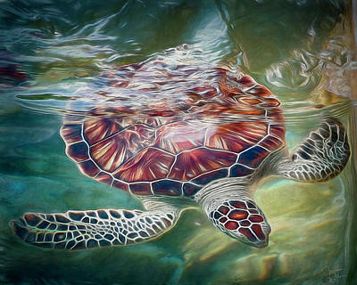 Photograph - Sea Turtle Dive by Teresa Wilson