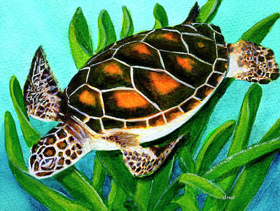 Sea Turtle Honu #352 Art Print by Donald k Hall
