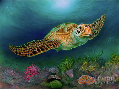 Painting - Sea Turtle II by Pete Sintes