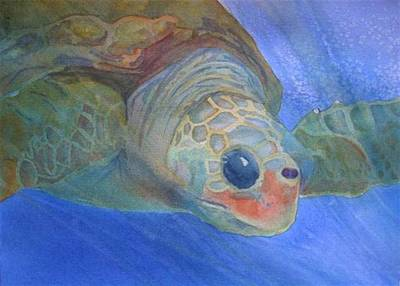 Sea Turtle IIi Art Print by Dee Durbin