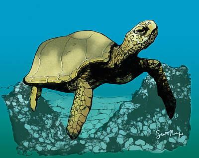 Tortoise Digital Art - Sea Turtle In The Coral Reef by Scott Rolfe