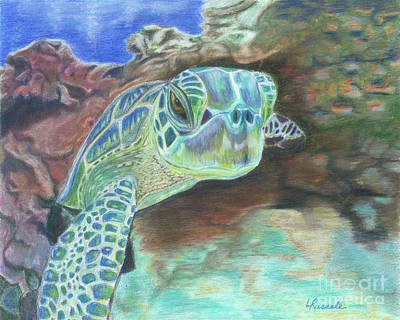Sea Turtles Drawing - Sea Turtle  by Laura Russell