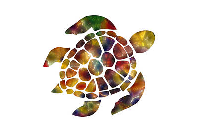 Photograph - Sea Turtle by Michael Colgate
