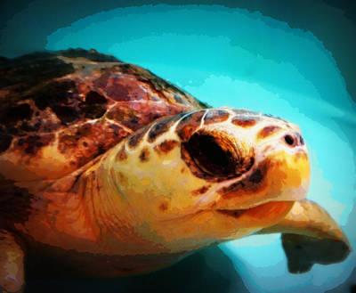 Sea Turtle Named Dewey Original by Laurie Pike