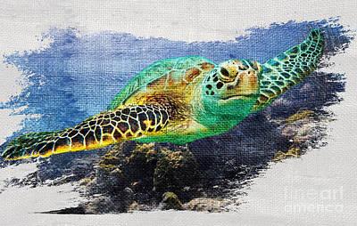 Sea Turtle On Canvas Art Print by Jon Neidert