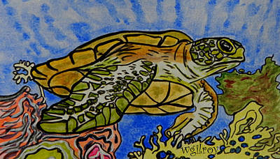 Baby Sea Turtle Painting - Sea Turtle Reef by W Gilroy