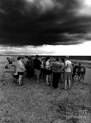 Photograph - Sea Turtle Release Gathering  by WaLdEmAr BoRrErO