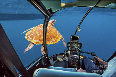 Photograph - Sea Turtle Submarine by Benny Marty