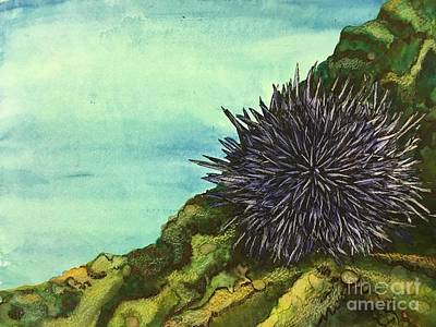 Mixed Media -  Sea Urchin   by Mastiff Studios
