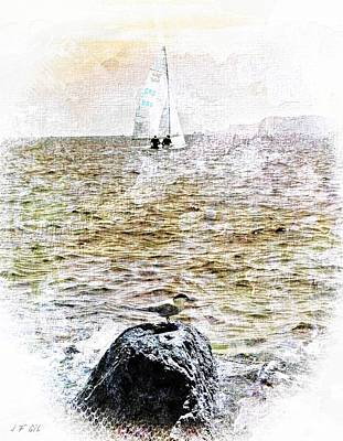 Seabird L'oiseau Et La Mer Art Print