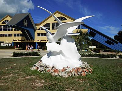 Photograph - Seabird Statue by Pema Hou