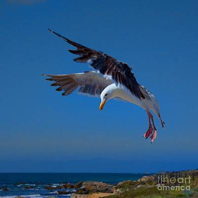 Photograph - Seafood Landing by Patrick Witz