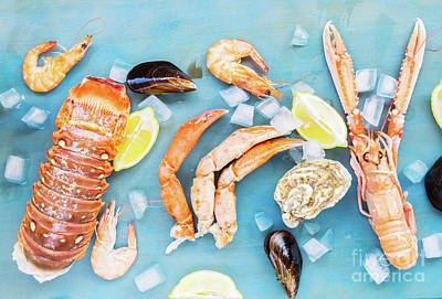 Photograph - Seafood On Blue  by Anastasy Yarmolovich