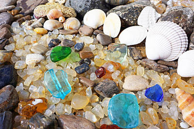 Decorative Fossil Photograph - Seaglass Art Prints Sea Glass Shells Agates by Baslee Troutman Art Prints