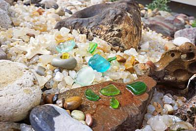 Photograph - Seaglass Fossil Rocks Coastal Art by Baslee Troutman Fine Art Prints