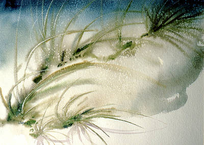 Seagrass Painting - Seagrass by Jacob Krapowicz