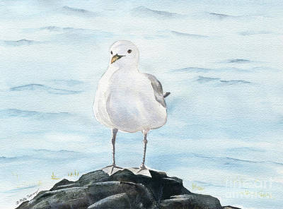 Painting - Seagull 2 by Melly Terpening